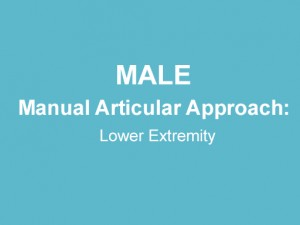 Manual Articular Approach: Lower Extremity